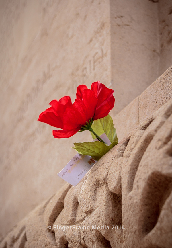 Image of a flower inserted into a crack at the Thiepval Memorial to the Missing of the Somme in France